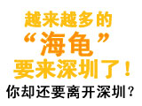 """还要离开深圳吗?越来越多的""""海龟""""都要来深圳了哦!"""